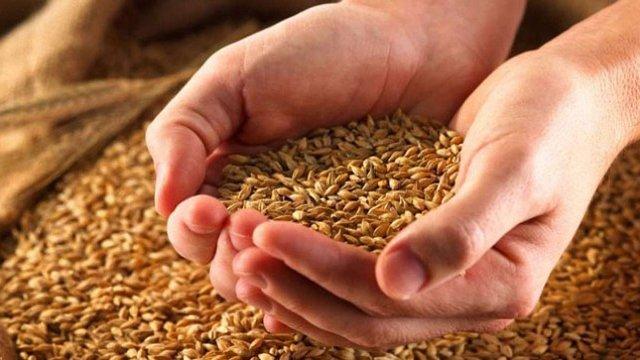 Українські аграрії намолотили 35 млн тонн зерна