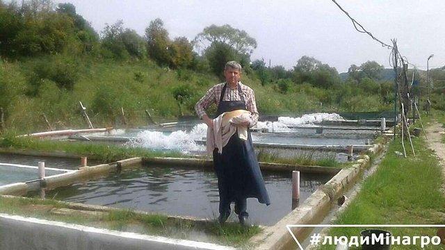 Львів'янин за 11 років виростив 400 тонн форелі