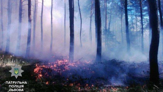 Львівські патрульні допомогли гасити лісову пожежу