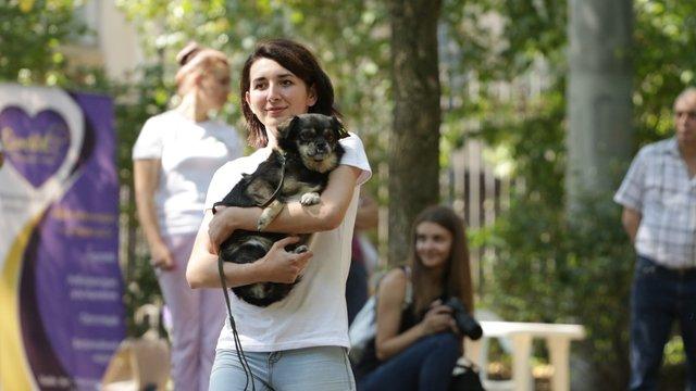 Львівські безпородні собаки взяли участь у конкурсі талантів