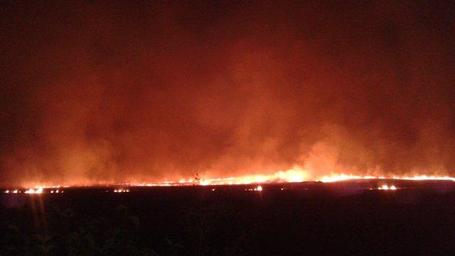 Поблизу Львова згоріло 3 га стерні