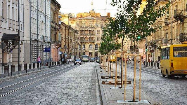 Восени у Львові висадять близько 1300 дерев