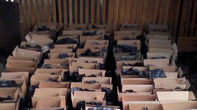 На Прикарпатті затримали контрабандистів, які намагалися вивезти за кордон цигарки на ₴1 млн