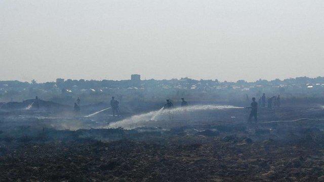 Надзвичайники загасили пожежу торфу поблизу Львова