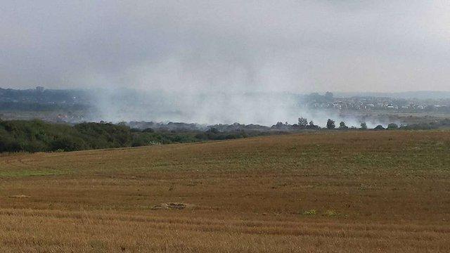 На Яворівщині другий день гасять пожежу на торфовищі