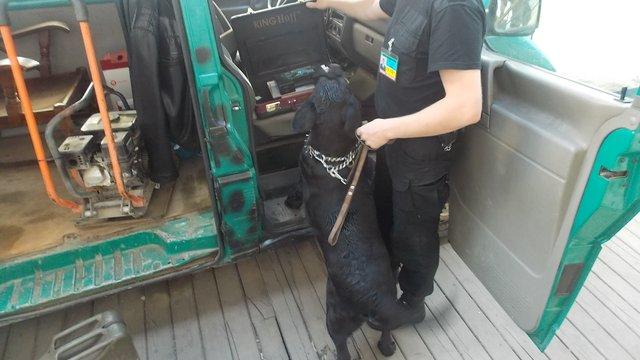 У пункті пропуску «Краковець» службовий пес знайшов у громадянина Польщі нелегальну зброю