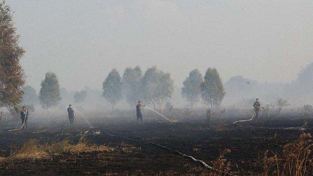 Дві сотні рятувальників гасять масштабну пожежу торфу на Яворівщині