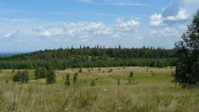 На Львівщині створили чотири нові об'єкти природно-заповідного фонду
