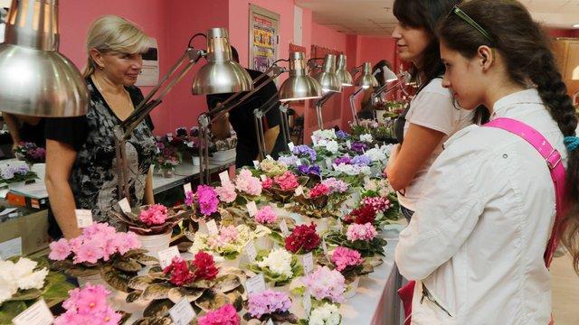 У Львів привезли унікальну виставку кактусів та фіалок