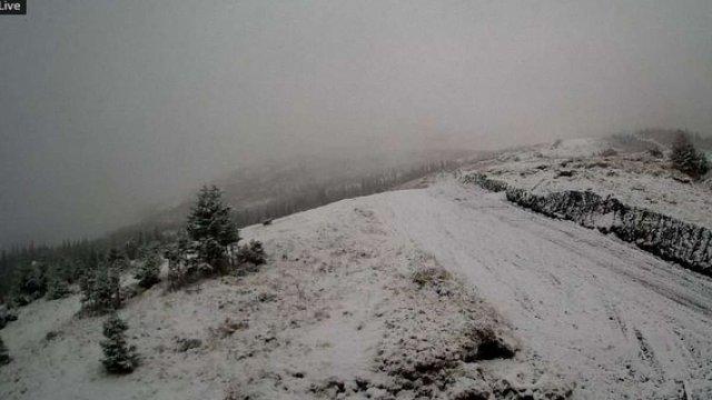 На високогір'ї українських Карпат випав сніг