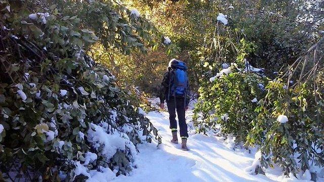 Біля Ужгорода в горах випав перший сніг