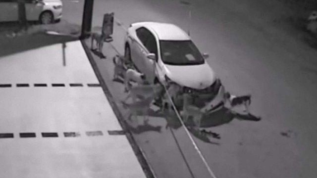 У Туреччині бездомні собаки понищили автомобіль