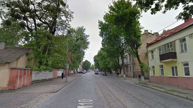 Під час реконструкції вулиці Шевченка у Львові зріжуть понад 170 дерев