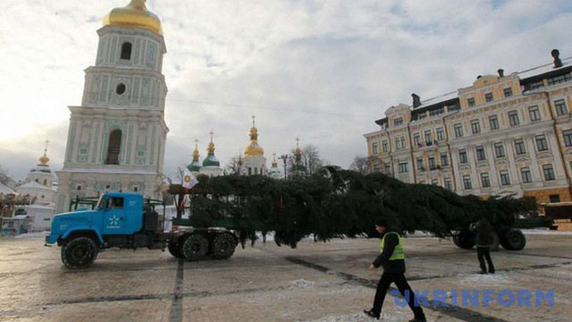 До Києва привезли 26-метрову новорічну ялинку