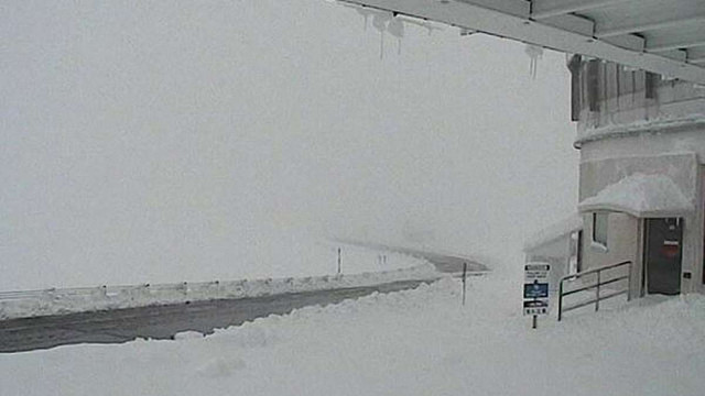 На Гаваях випала рекордна кількість снігу