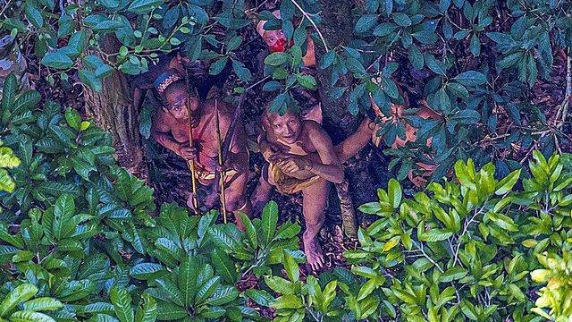 Бразильський фотограф знайшов невідоме плем'я індіанців у лісах Амазонки