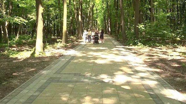 Львів'ян закликають придбати іменні лавки у сихівському лісі
