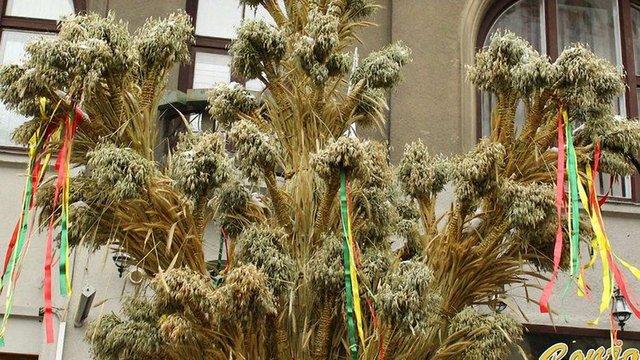На Святвечір у Львові встановлять традиційний різдвяний дідух