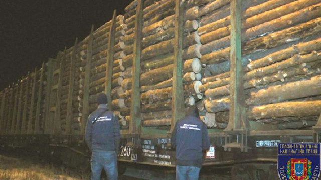 Із України до Румунії намагались вивезти 56 вагонів лісу-кругляку