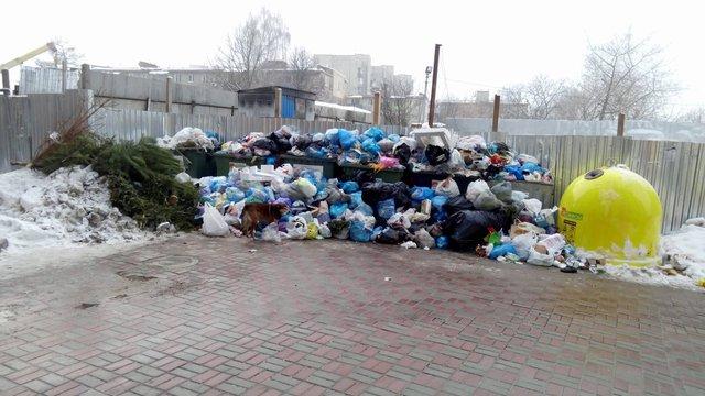 За день мерія Львова скерувала 400 листів  з проханням допомогти з вивезенням сміття