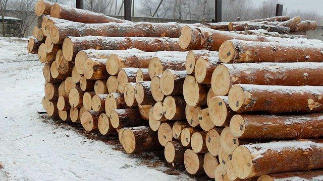 У Раві-Руській запустили нову лісопильну лінію