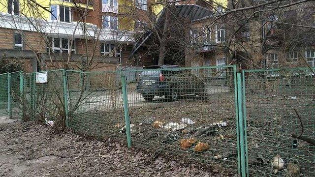 В Києві невідомі потруїли рідкісних птахів на подвір'ї місцевого колекціонера
