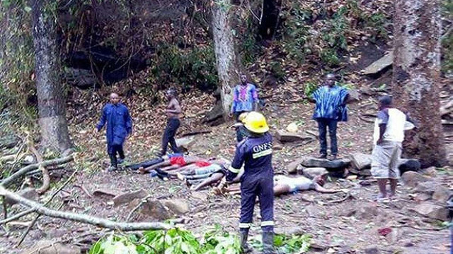 У Гані в результаті падіння дерева загинули 20 школярів