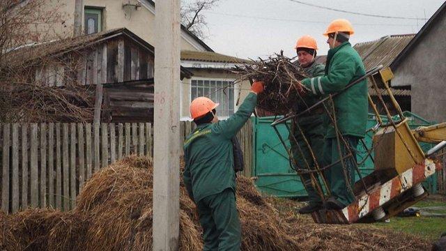 Львівські енергетики допомагають лелекам будувати гнізда
