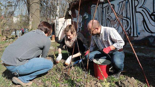 У львівському парку «Знесіння» розпочали облаштування урбан-саду