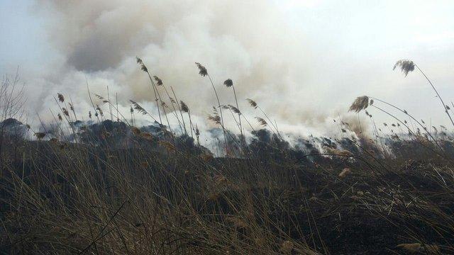 Пожежники майже добу гасили пожежу на сміттєзвалищі поблизу Новояворівська