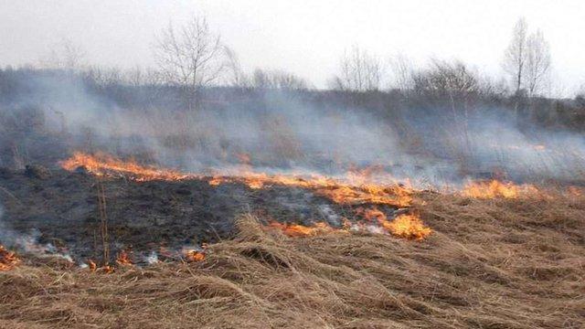 Віце-прем'єр пригрозив відбирати землі у безвідповідальних власників, які спалюють суху траву