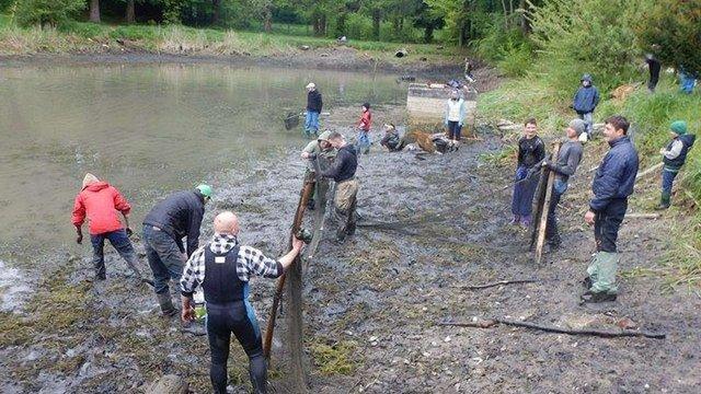 У львівському парку «Погулянка» з озера виловили близько тонни живої риби
