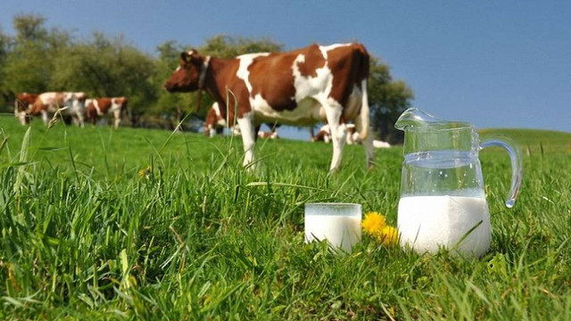 Міністерство аграрної політики хоче заборонити молоко другого сорту