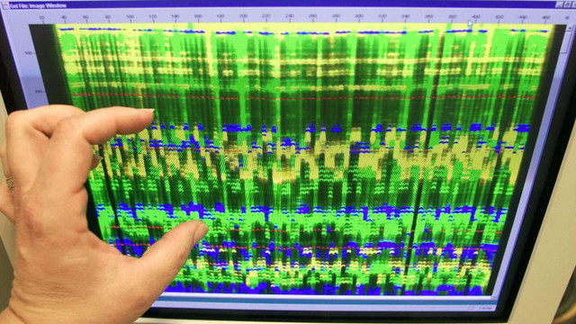 Microsoft планує створити сховище даних на молекулах ДНК у хмарі