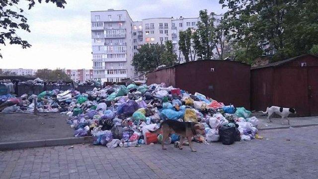 У Шевченківському та Сихівському районах найгірша ситуація з вивозом сміття