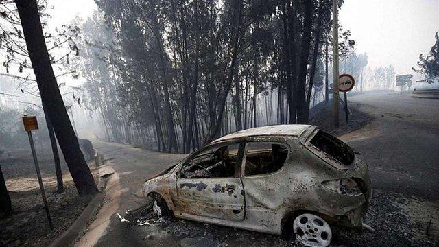 У Португалії у лісових пожежах загинуло 60 людей, країна оголосила триденну жалобу
