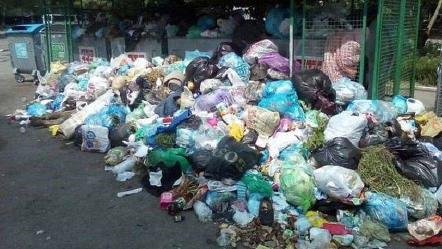 41% сміттєвих майданчиків Львова переповнені