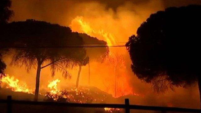 В Іспанії через лісову пожежу евакуювали понад 2 тис. осіб