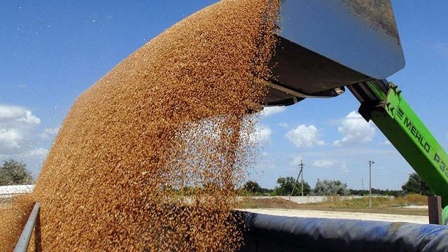 Україна встановила новий рекорд з експорту зернових