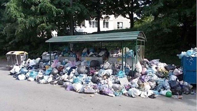 22% сміттєвих майданчиків у Львові переповнені відходами
