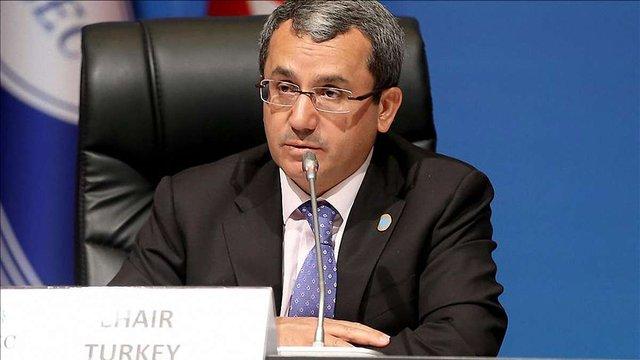 Анкара відстоюватиме права жителів окупованого Криму і кримських татар, - МЗС Туреччини