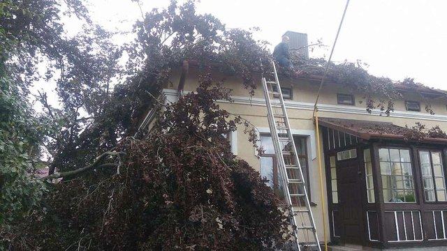 У Старосамбірському районі вітер позривав дахи будинків, лікарні та мерії