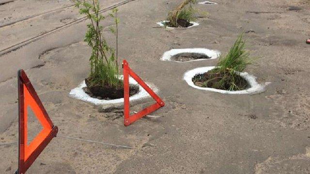 Активісти засадили рослинами вибоїни на вул. Замарстинівській у Львові