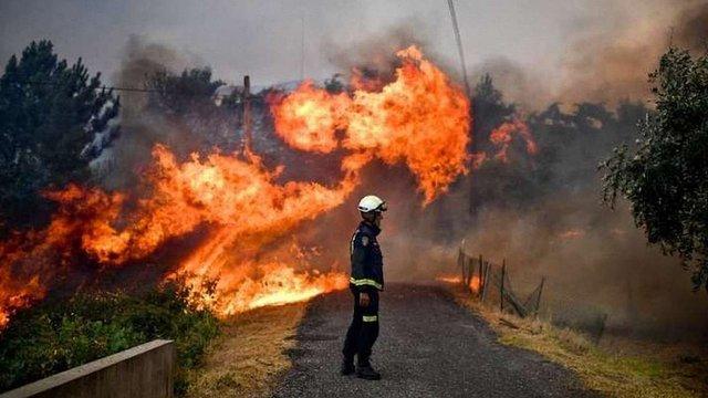 Через пожежі у Франції за одну ніч евакуювали 10 тис. людей