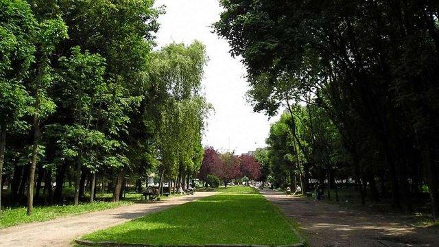 Цьогоріч у Скнилівському парку відремонтують доріжки і центральну алею