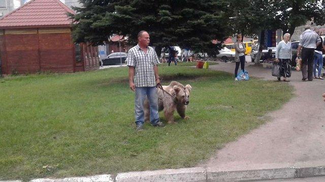 Екологи з поліцією забрали ведмедицю з пересувного цирку на Львівщині