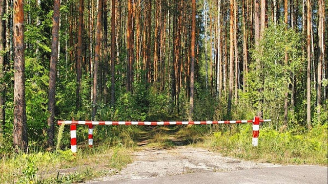 До лісів Прикарпаття обмежили в'їзд транспорту на період спеки