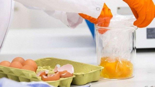 У Нідерландах затримали підозрюваних у справі про зараження курячих яєць в ЄС