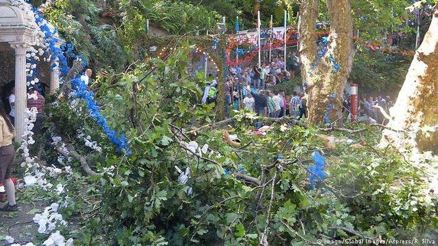 12 людей загинуло внаслідок падіння дерева час релігійного свята у Португалії