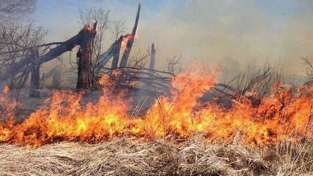 У восьми областях України оголошено найвищий рівень пожежної небезпеки